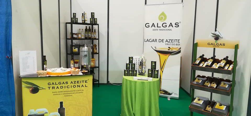 stand_galgas